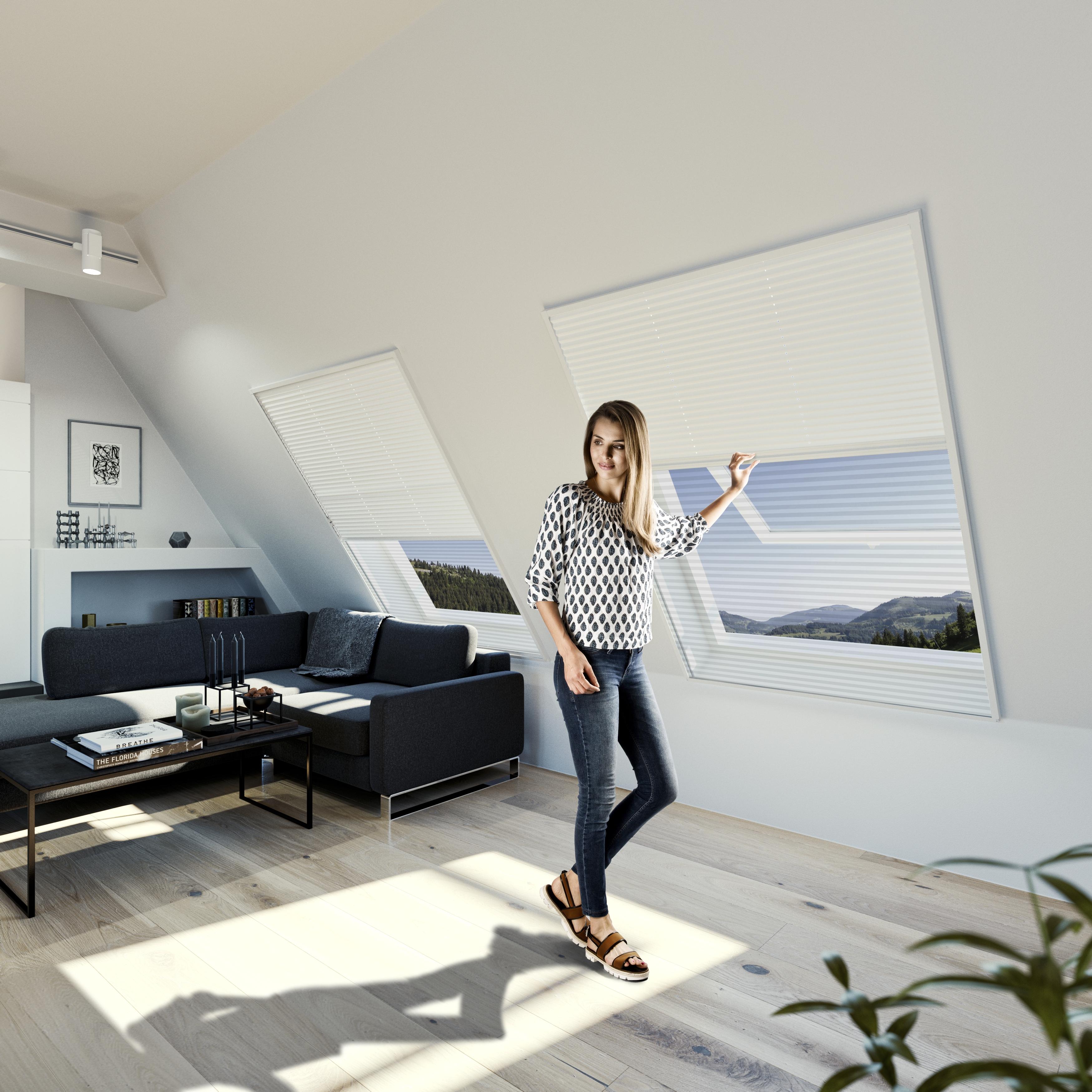 insektenschutz sonnenschutz plissee 2in1 teso insektenschutzsysteme. Black Bedroom Furniture Sets. Home Design Ideas